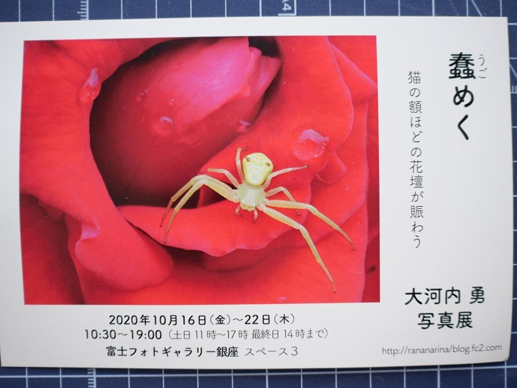 秋葉原から浅草橋そして写真展_f0224100_09051989.jpg