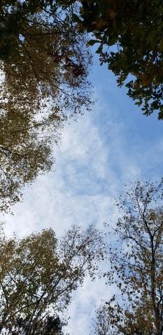 山梨県北杜市の秋の風景_a0101801_14244837.jpg