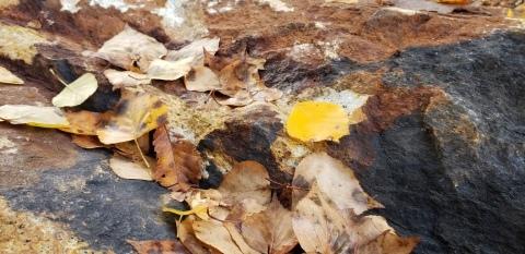 山梨県北杜市の秋の風景_a0101801_14273071.jpg
