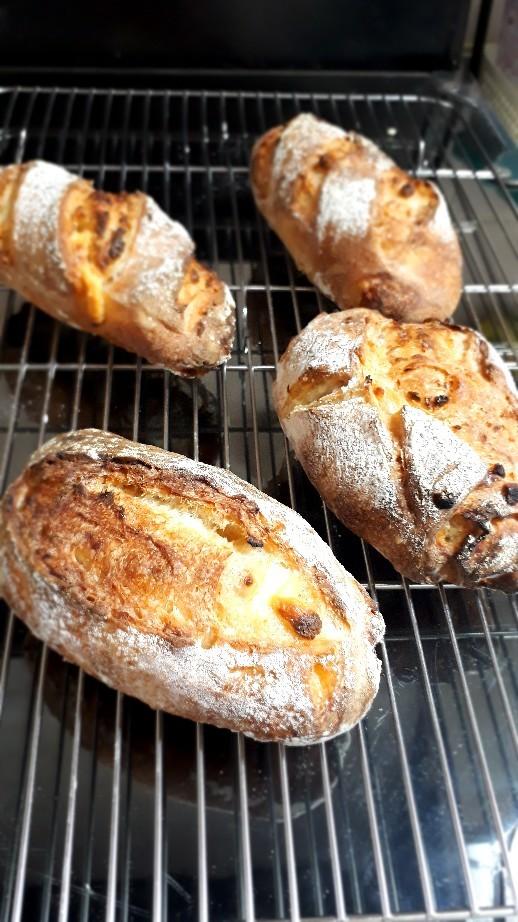 レモンピールとクリームチーズのパン_c0226331_14402941.jpg