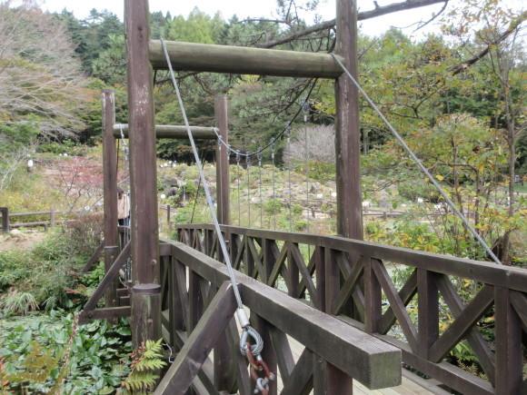 六甲高山植物園_d0154954_18455757.jpg