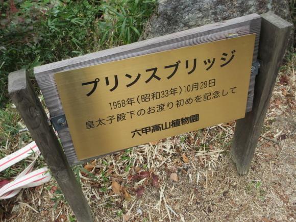 六甲高山植物園_d0154954_18461456.jpg