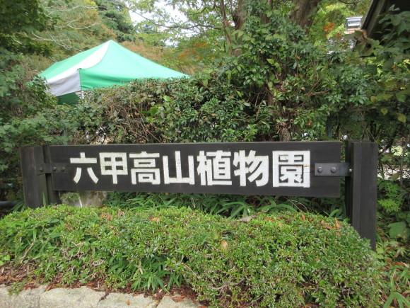 六甲高山植物園_d0154954_18481088.jpg