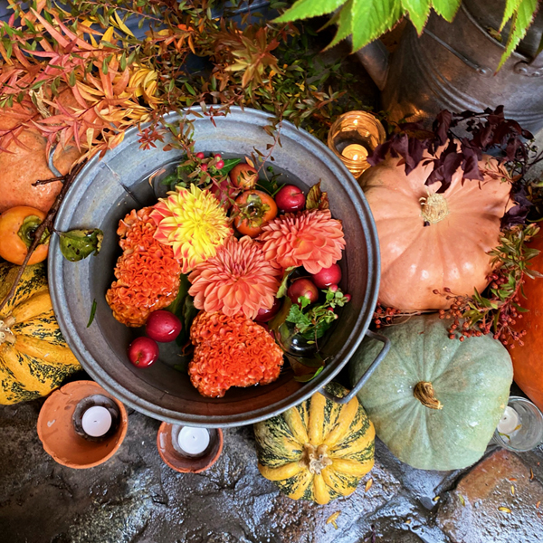 秋色のhugowar_e0277800_21150054.jpg