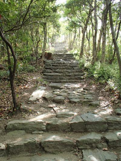 奠供山、玉津島神社、鏡山、奇麗です。_c0367107_14462383.jpg