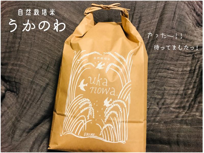 食卓のデザイン#57:自然栽培『うかのわ』の新米の玄米がやって来た!_d0018646_01395704.jpg