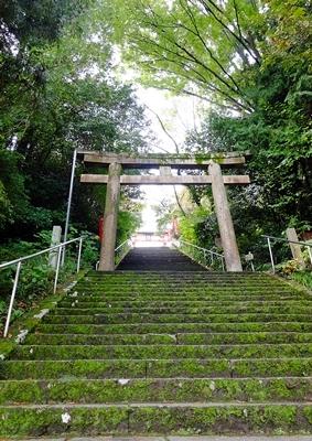 高野山への町石道を歩きました。_b0194861_12170857.jpg