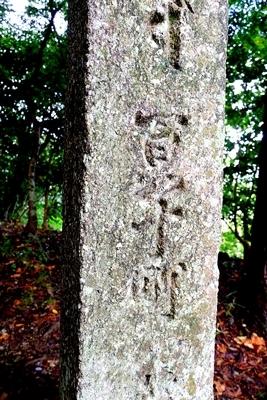 高野山への町石道を歩きました。_b0194861_12185735.jpg