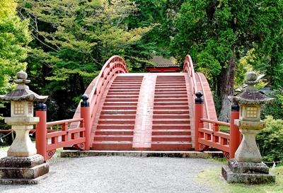 高野山への町石道を歩きました。_b0194861_12304243.jpg