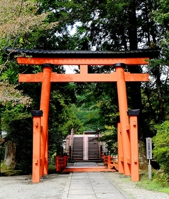 高野山への町石道を歩きました。_b0194861_13582591.jpg