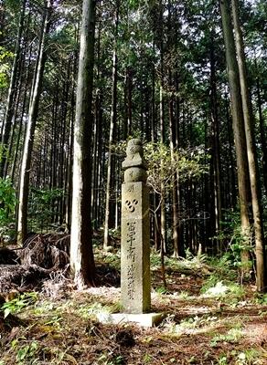 高野山への町石道を歩きました。_b0194861_13593901.jpg