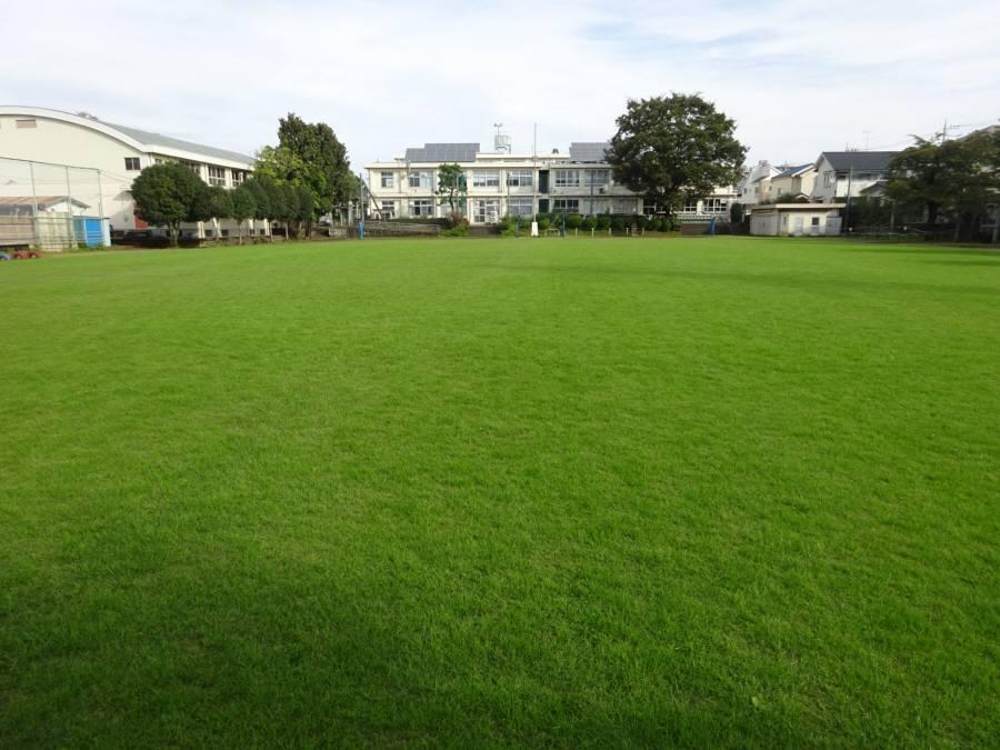 R2.10月の13小校庭芝生その2_f0059673_22323058.jpg