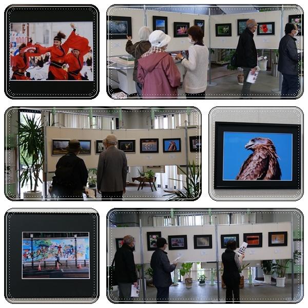 お友達の「写真展示会」(^^♪_b0364186_12483384.jpg