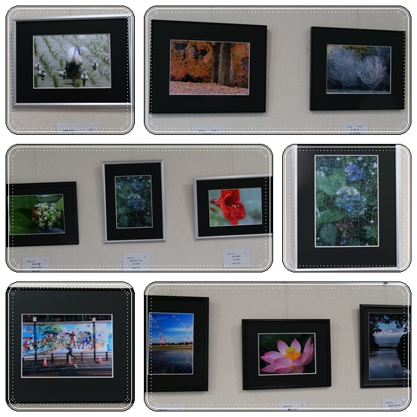 お友達の「写真展示会」(^^♪_b0364186_12501939.jpg