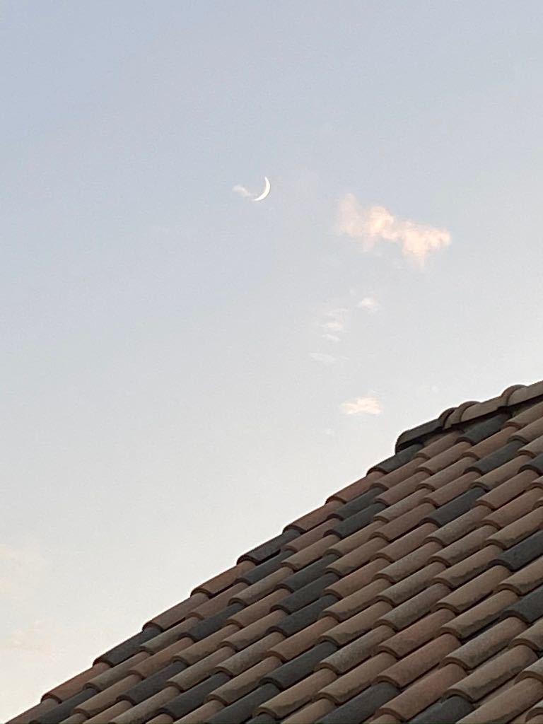 夕方は晴れました。_f0130894_19060440.jpg