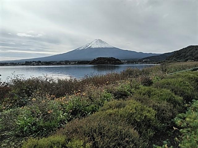 【赤く染まるコキアと富士山の絶景、、他】ミニツアー_f0354923_22262320.jpg
