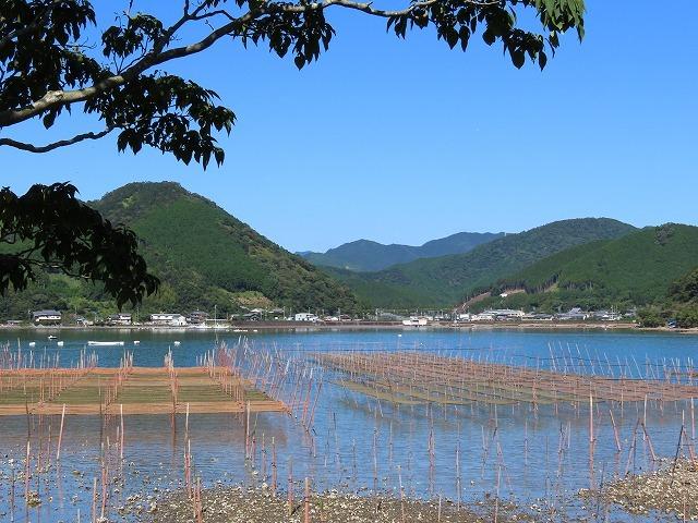 矢口アオサノリ風景(その1)(撮影:10月14日)_e0321325_19372223.jpg