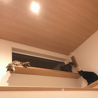 猫見窓に爪とぎを設置する、の巻。_c0367433_13120344.jpg