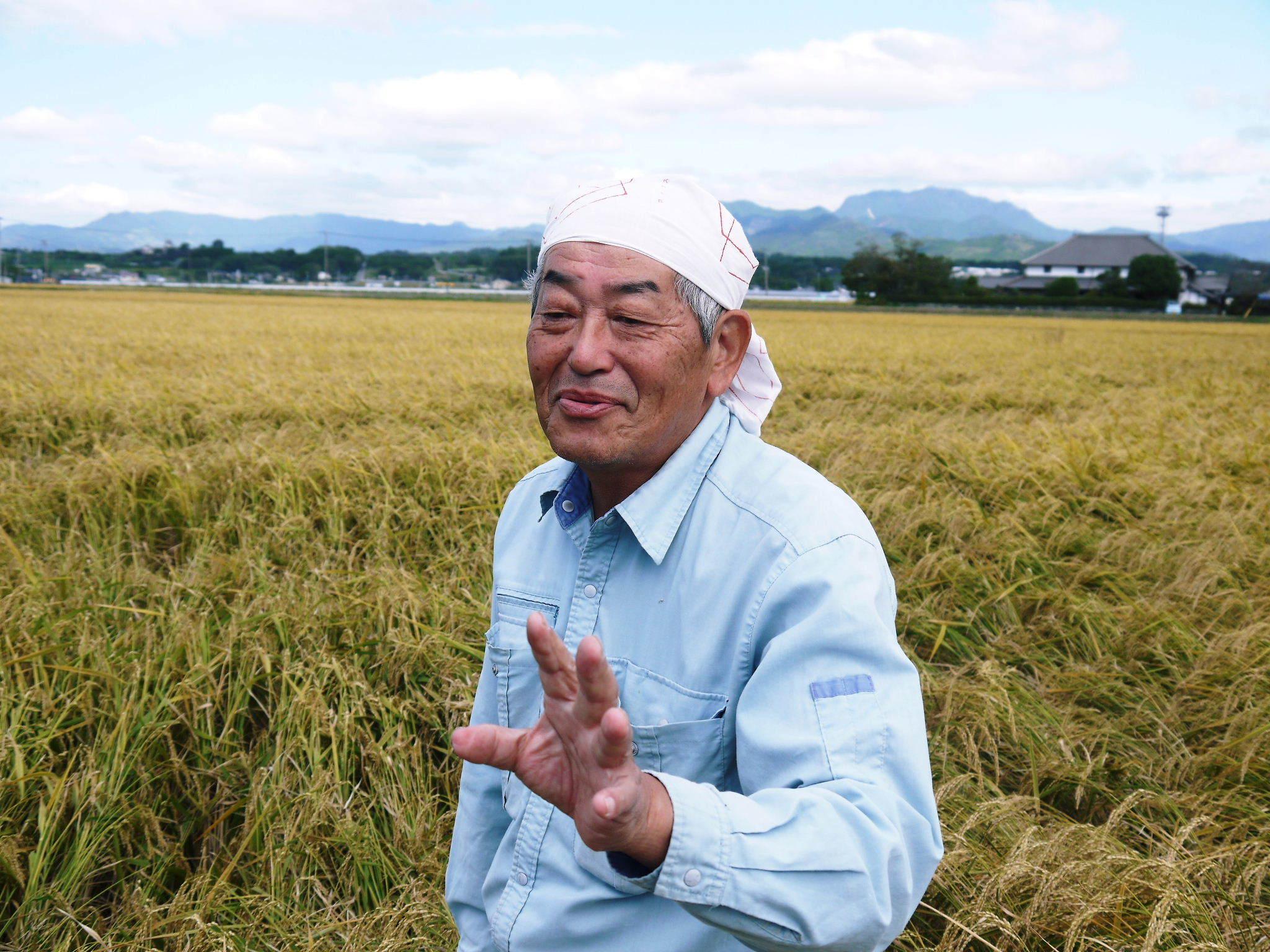 無農薬の『雑穀米』『発芽玄米』『米粉(微細粒米粉)』大好評販売中 稲刈りの様子2020(後編)_a0254656_17100365.jpg