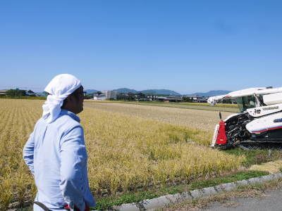 無農薬の『雑穀米』『発芽玄米』『米粉(微細粒米粉)』大好評販売中 稲刈りの様子2020(後編)_a0254656_18040279.jpg
