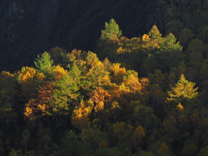 紅葉と雲海_c0110112_21083849.jpg
