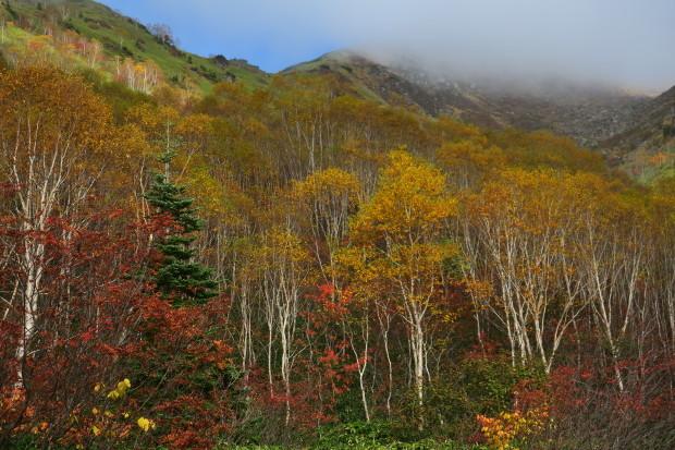 紅葉の焼岳へ_d0103314_21325642.jpg