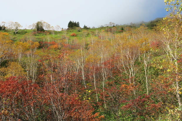 紅葉の焼岳へ_d0103314_21330726.jpg