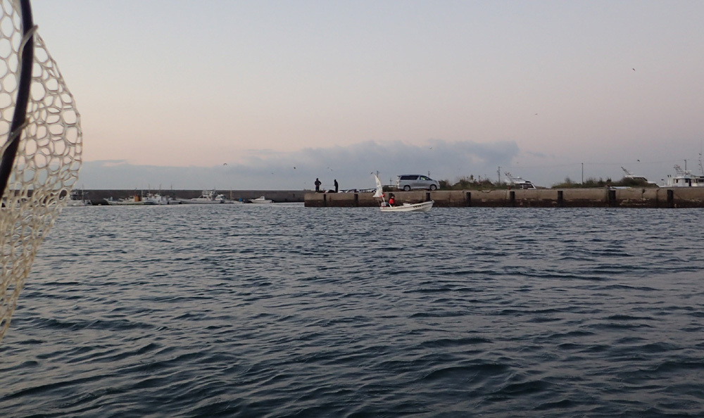 2020年、オーパL3ボート釣り9回目。 2020年10月21日(水)_d0171823_22173728.jpg