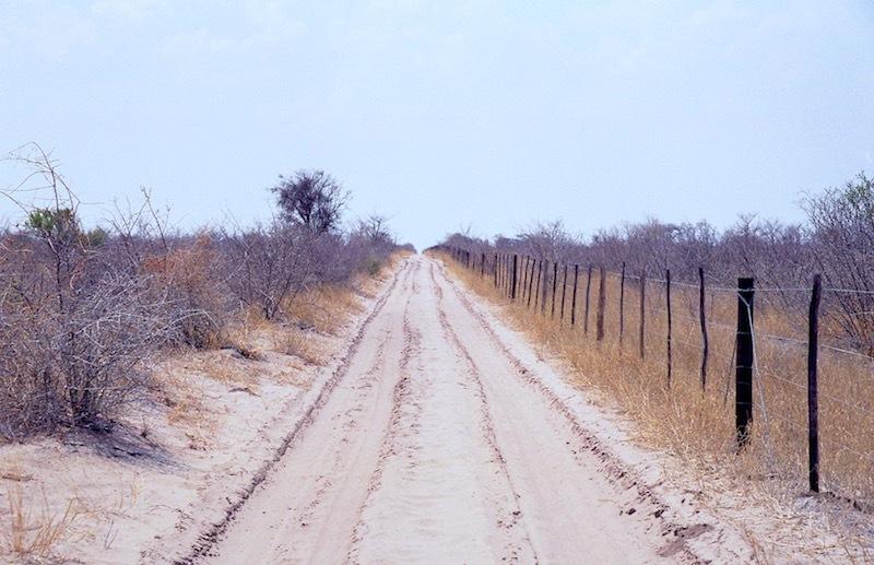 アフリカの記憶 159_d0010432_16582493.jpg