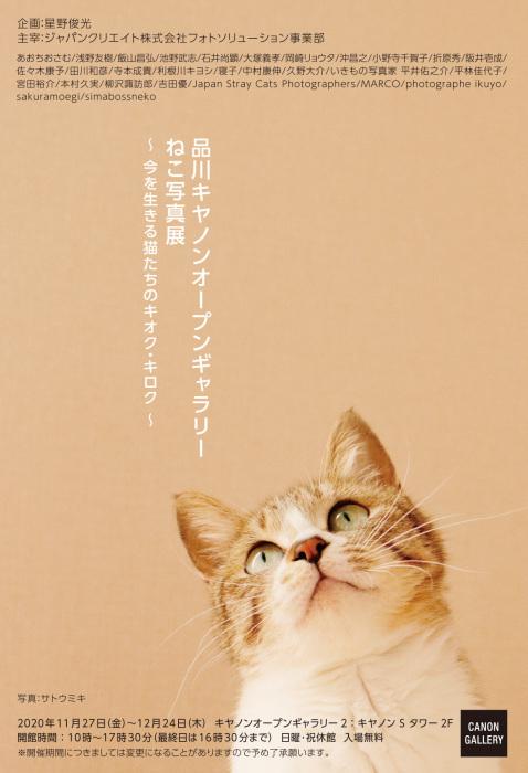 品川キヤノンオープンギャラリー ねこ写真展_c0194541_18495246.jpg