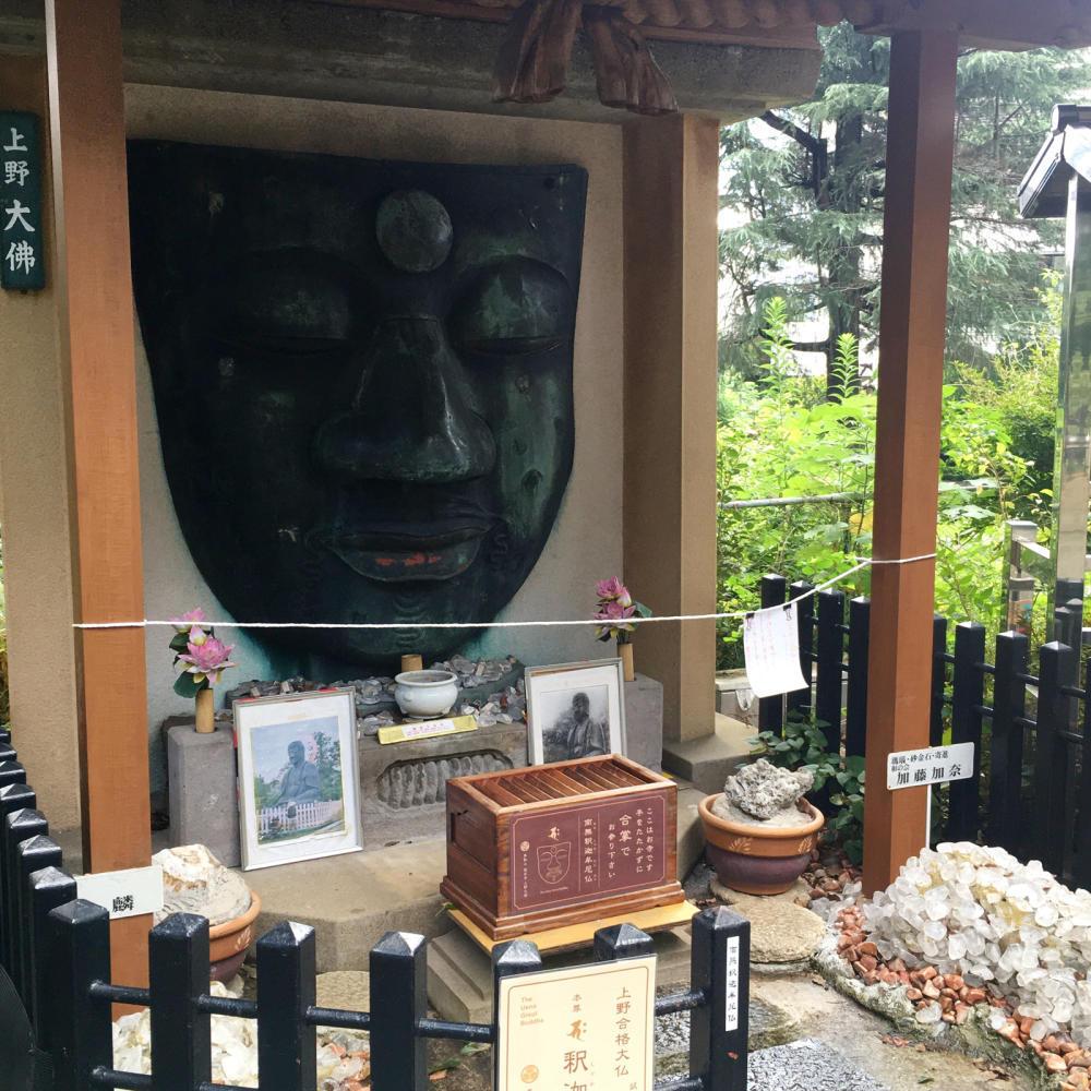 顔しかない上野大仏_c0060143_02223608.jpg