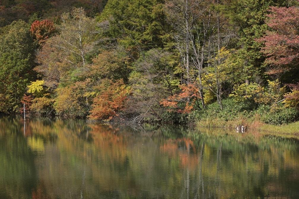 高原に秋の訪れ_e0304170_18180176.jpg