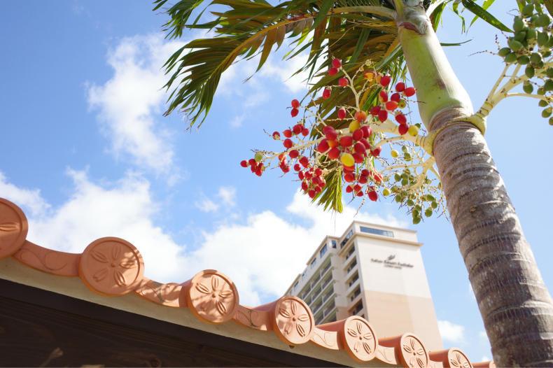 2019年末沖縄【カフーリゾートフチャク コンド・ホテル】_b0208577_11345183.jpg