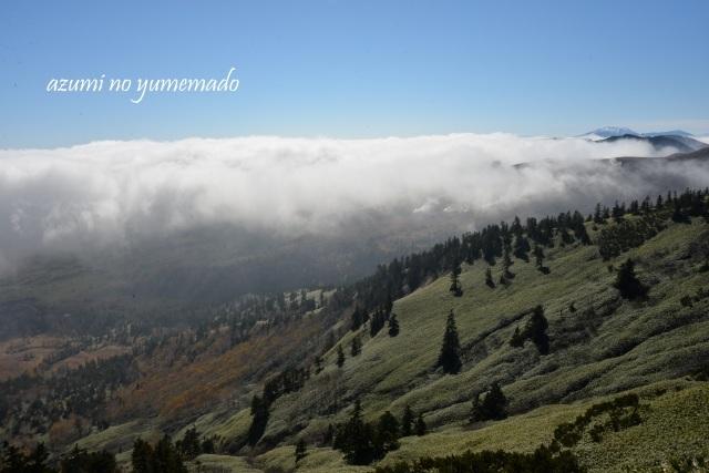 雲上の世界へ~♪ : azumiの夢まど