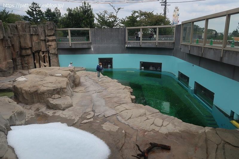 2020年9月 王子動物園4 その2_a0052986_07542107.jpg