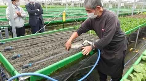 高床式砂栽培農場を産業委員会で視察!_d0050503_05463830.jpg