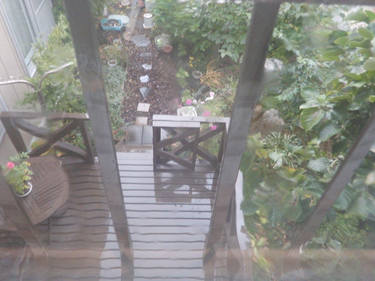 雨のち虹_c0025115_21082533.jpg