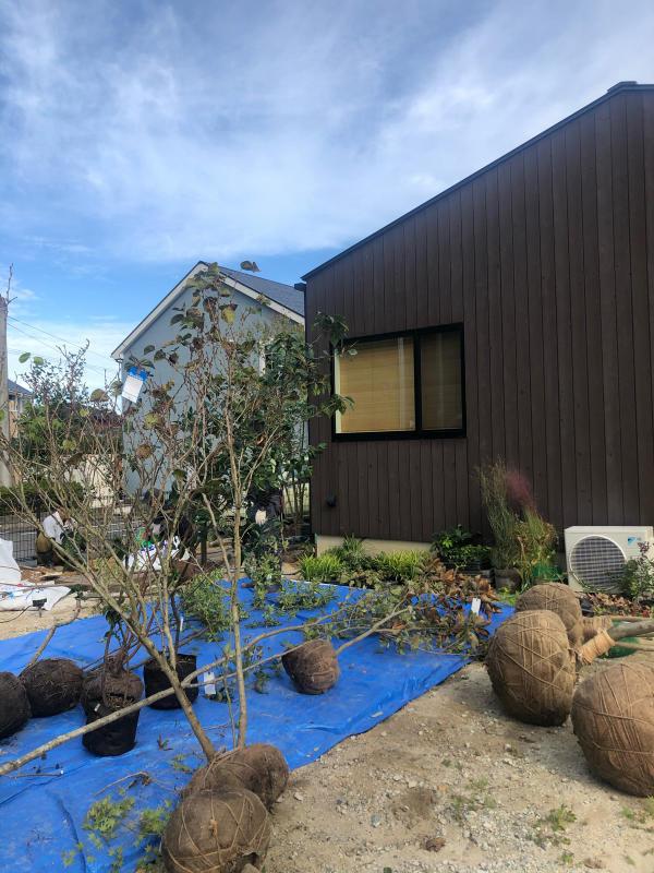 『糸島、大庇の家』のガーデン工事が行われました。建物は先に完成しておりましたが、植栽は暑さが落ち着くまで待っていただいていたのです。_e0029115_13575117.jpg