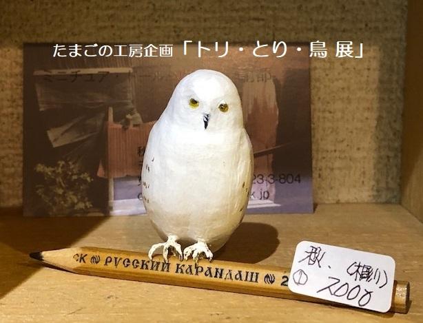 たまごの工房企画「トリ・とり・鳥 展」その12(最終日)_e0134502_19244789.jpeg