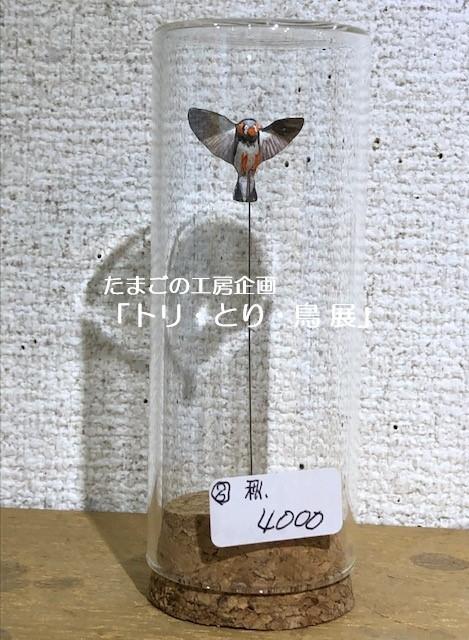 たまごの工房企画「トリ・とり・鳥 展」終了致しました。_e0134502_19252637.jpeg