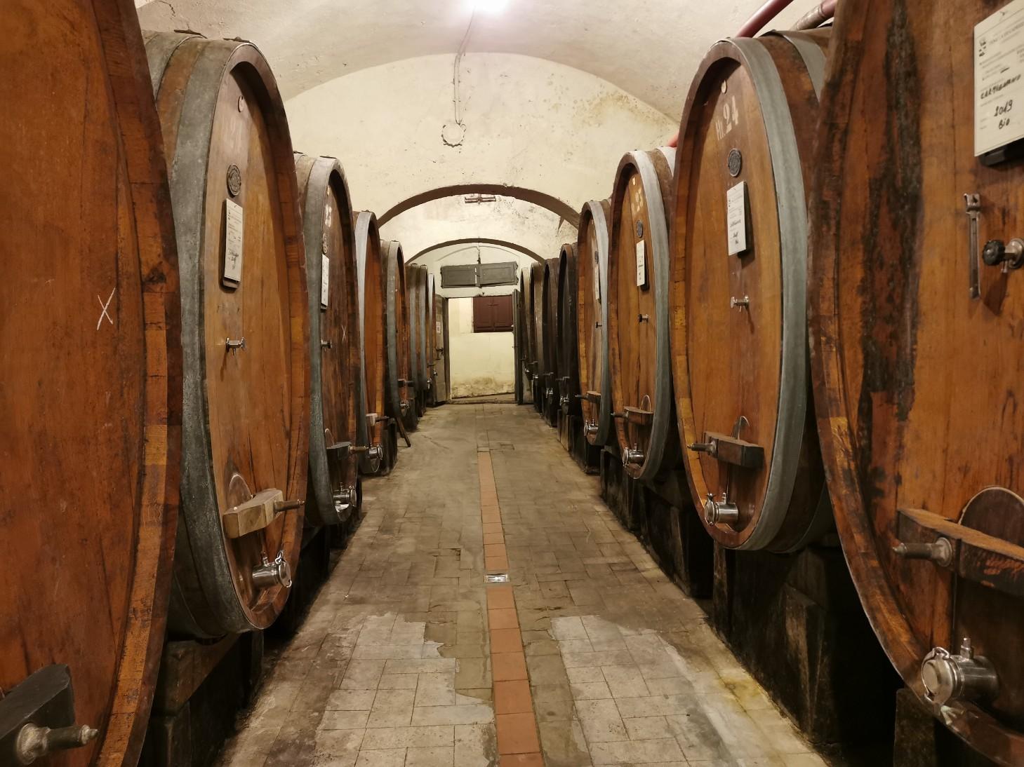 メディチ家が選んだワイン畑_f0106597_19224949.jpg