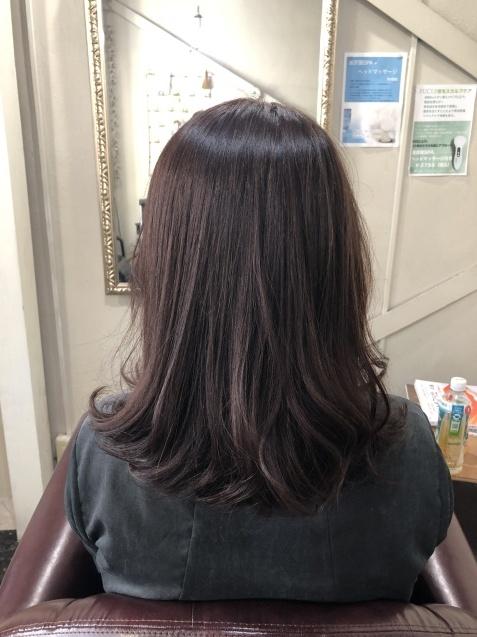 髪の毛も、若返り!_b0088100_23314402.jpeg