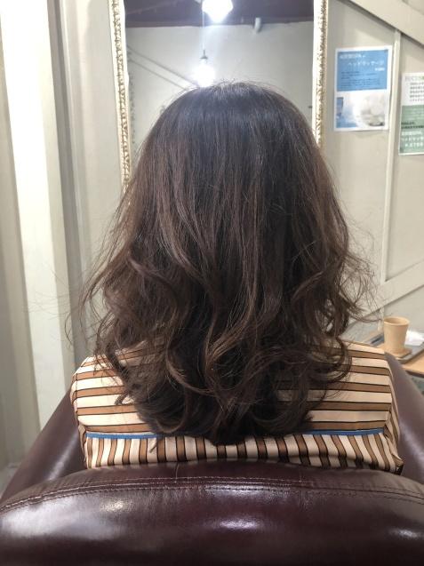 髪の毛も、若返り!_b0088100_23324733.jpeg