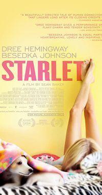 Starlet_d0056703_13032064.jpg