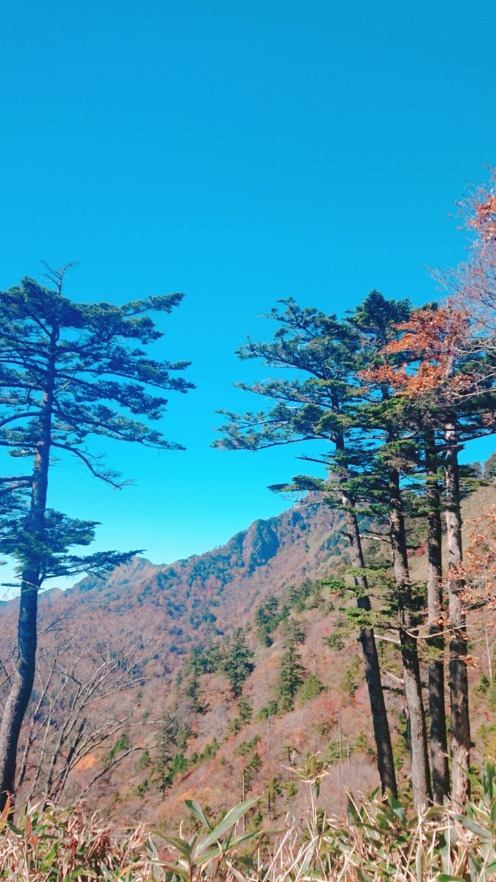 初めて石鎚山に登りました。_b0334704_23140674.jpg