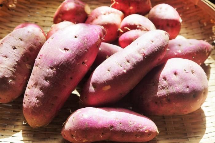 ■菜園発【紅春香/安納芋の収穫と子芋の素揚げ】_b0033423_23260861.jpg