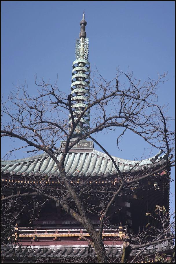 上野東照宮 -12_b0340572_21011010.jpg