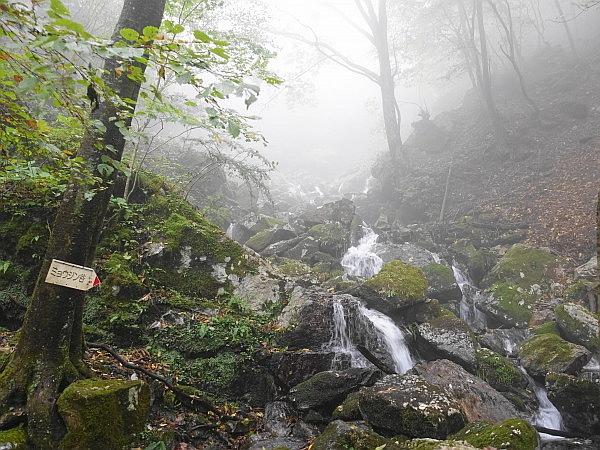 紅葉はおあずけ霧と暴風の明神岳  SOTA#JA/ME-002_f0073587_22452269.jpg
