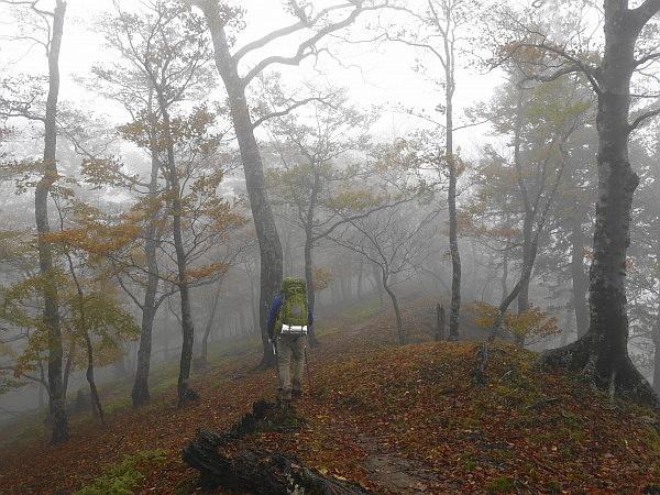 紅葉はおあずけ霧と暴風の明神岳  SOTA#JA/ME-002_f0073587_23304429.jpg