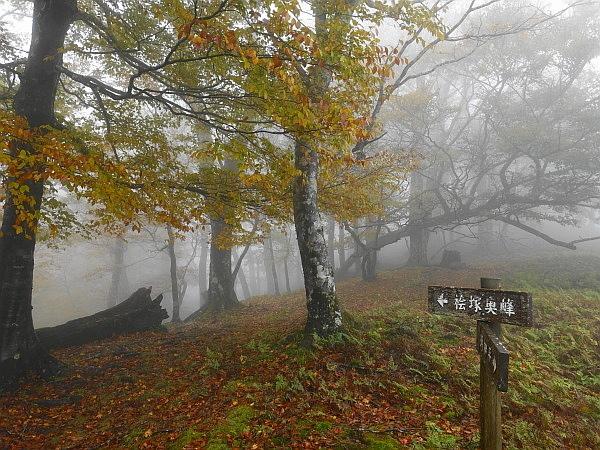 紅葉はおあずけ霧と暴風の明神岳  SOTA#JA/ME-002_f0073587_23311881.jpg
